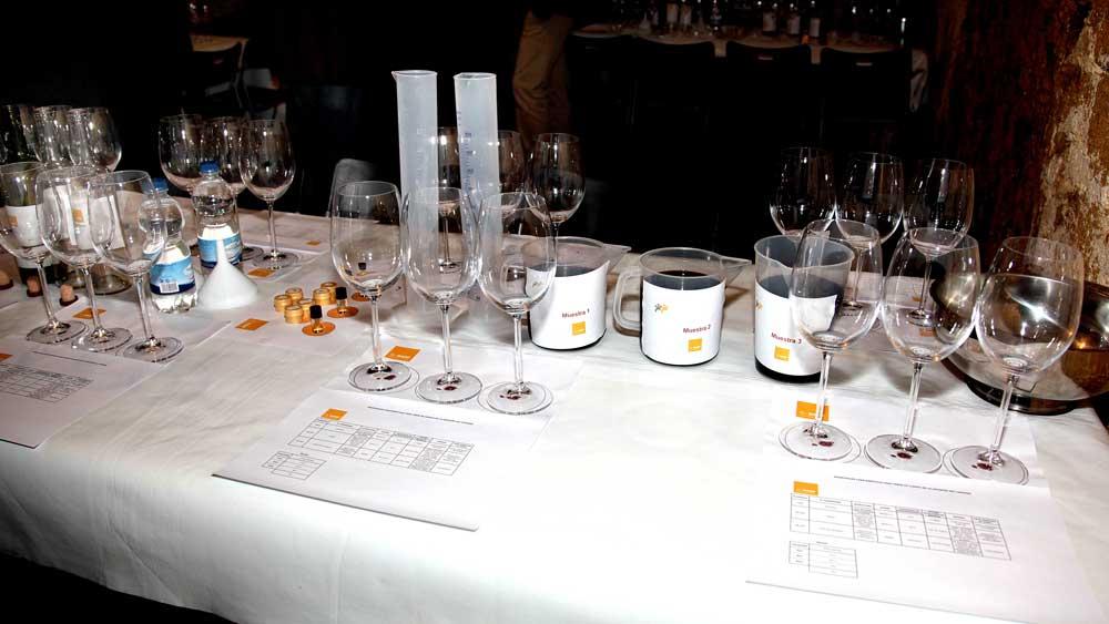 actividad de crear nuestros vinos en nuestras bodegas