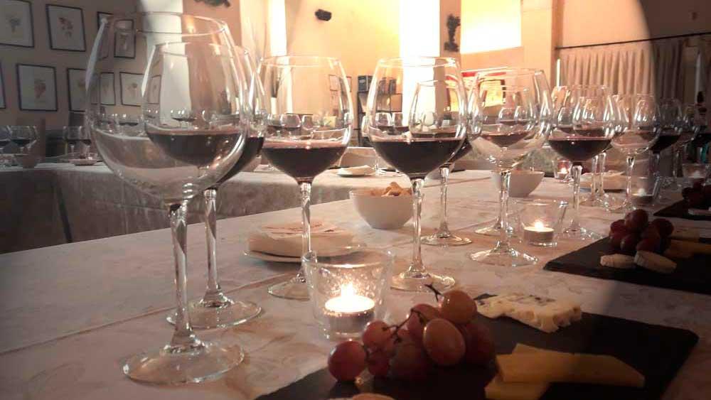 Toma un aperitivo en bodegas real cortijo de queso con nuestros vinos
